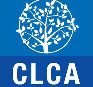 Le complément de libre choix d'activité (CLCA)