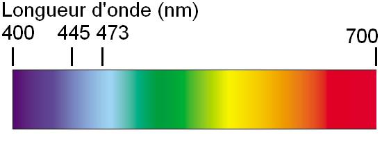 construction de laser bleu 1000mw 1w pas cher 5
