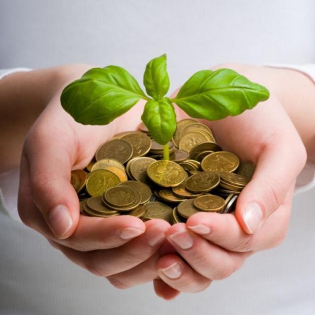 quels sont les investissements rentables pour 2016 0