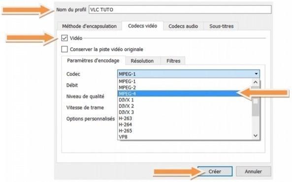 fixer bug vlc capture video codec video