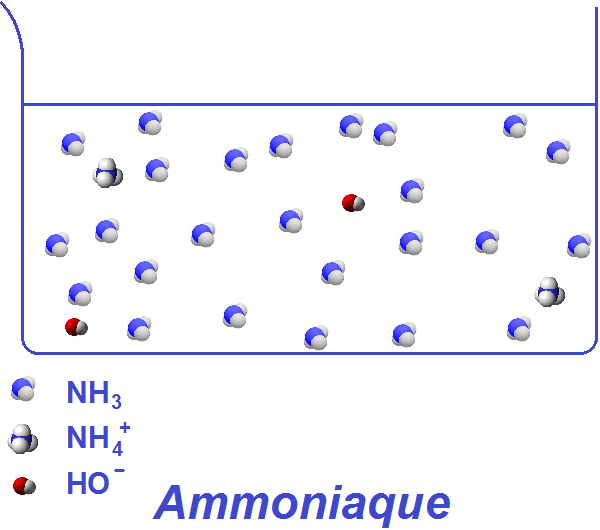 Ammoniaque NH4OH
