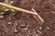 Bien préparer sa terre au jardin potager