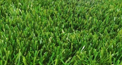 faire une belle pelouse