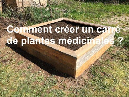 carré plantes médicinales