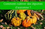 Cultiver des légumes d'automne