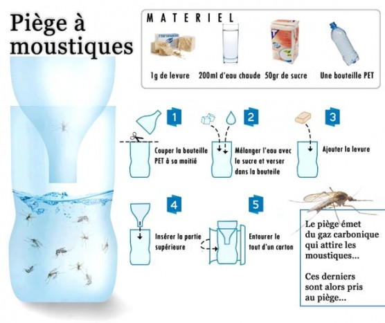 Fabriquer un piège à moustique
