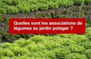 Les associations de légumes au jardin potager