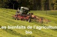 Les bienfaits de l'agriculture bio