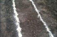Marquage au sol pour vos plantations