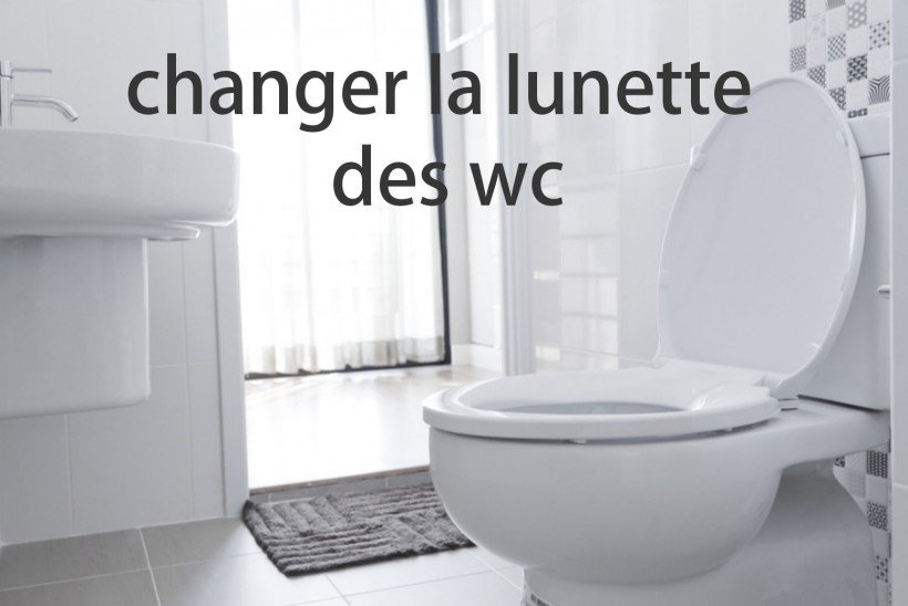 changer la lunette des wc astuces pratiques. Black Bedroom Furniture Sets. Home Design Ideas