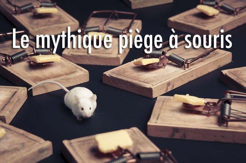 tapette a souris ou rats