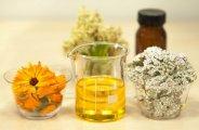 Bienfaits et utilisations de l'huile de jojoba