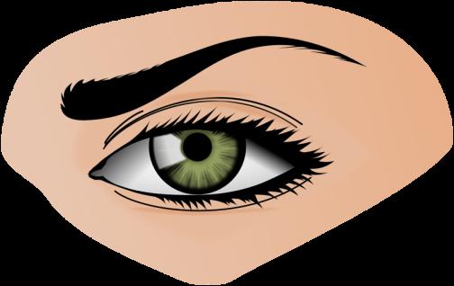 couleur crayon à sourcils