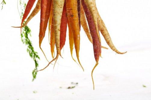 bronzage naturel carotte