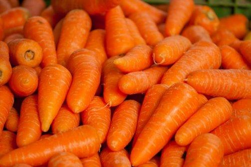 huile carotte bronzage