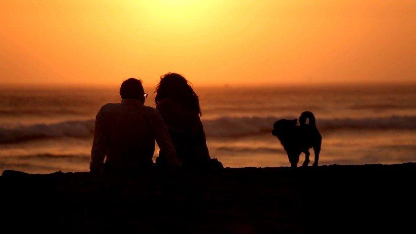 coucher soleil mars golden hour photo