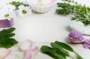 Les meilleures plantes anti-imperfections