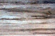 nouveaut s astuces pour le travail du bois astuces pratiques. Black Bedroom Furniture Sets. Home Design Ideas