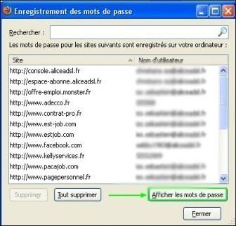 acceder a la liste des mots de passe enregistres dans firefox 2