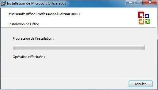 installation personnalisee de office 2003 5