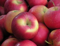 La pomme, un coupe faim naturel