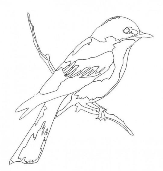 Modèle de marqueterie: l'oiseau / Marquetry pattern: the bird