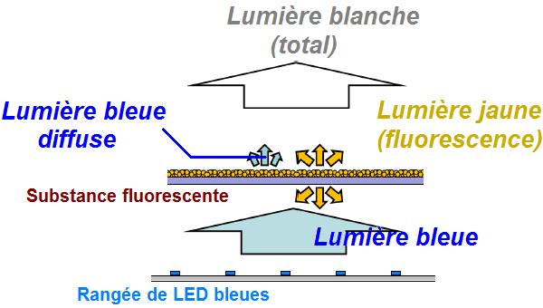 ampoule a filament led 4