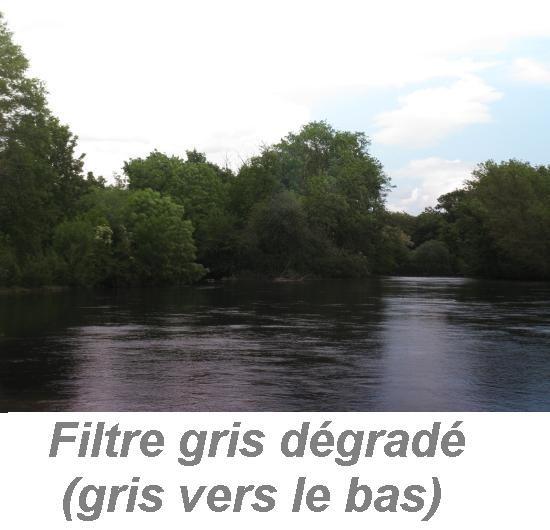 le filtre gris degrade 13