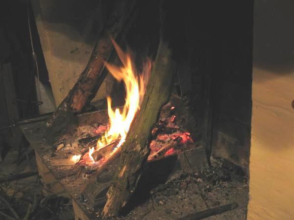 secher son bois de chauffage 2