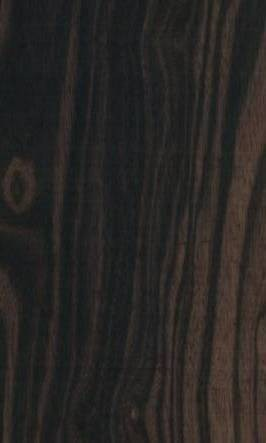 Couleur l ébène est un bois ayant une couleur allant