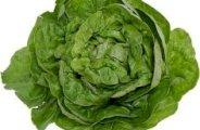 conservez plus longtemps vos legumes verts 0