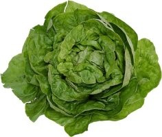 conservez plus longtemps vos légumes verts