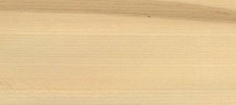 Les bois: l'Erable Sycomore