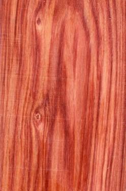 Les bois: Le Bois de rose