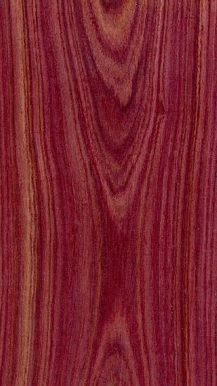 Les bois: Le Bois de Violette
