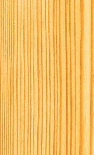 Les bois: le Mélèze