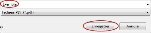 proteger par mot de passe un fichier pdf 4