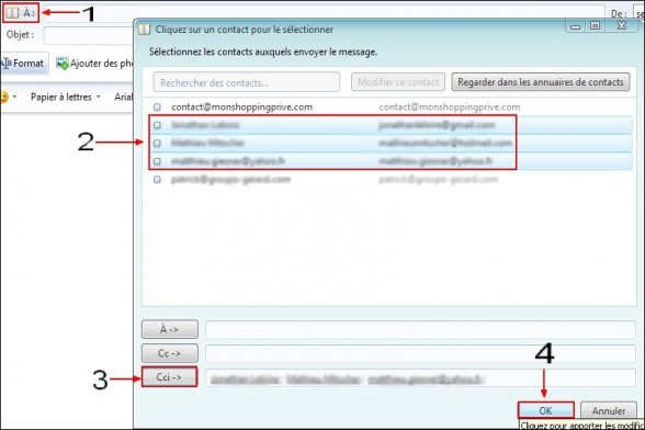 Windows Live Mail masquer les adresses email 1