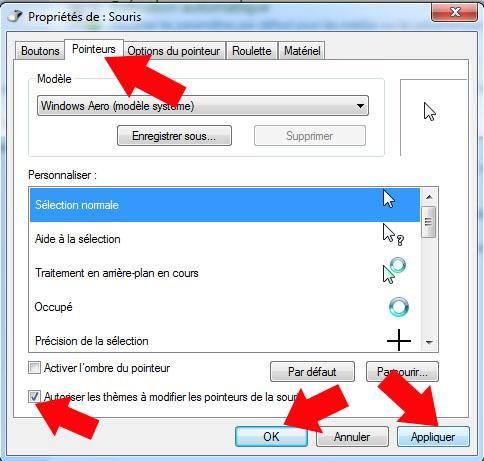 activer desactiver autoriser les themes a modifier la souris windows 7 5