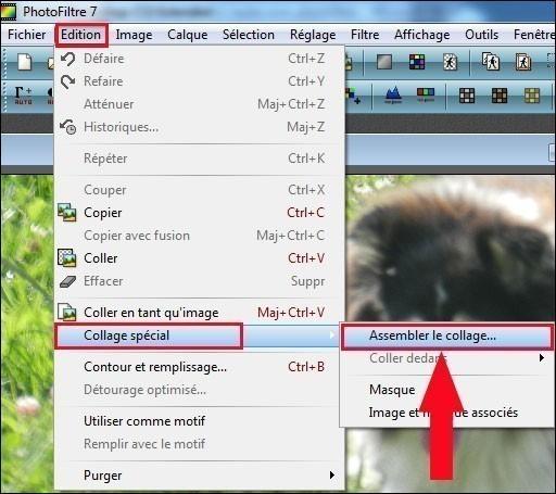 coller deux images l une a cote de l autre avec photofiltre 2