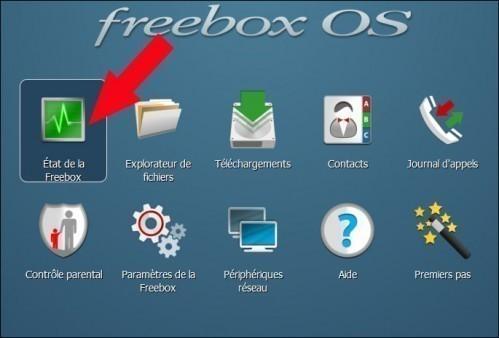 freebox revolution ip publique 2