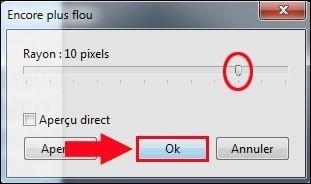 rendre flou une partie d une image avec photofiltre 4