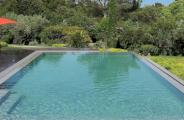 bicarbonate de soude pour lutter contre les algues dans la piscine astuces pratiques. Black Bedroom Furniture Sets. Home Design Ideas