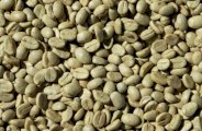Café vert et perte de poids