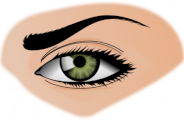 Maquiller et s'épiler les sourcils