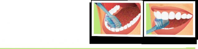 bien choisir et appliquer son dentifrice 2