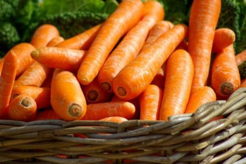 les aliments pour bronzer plus rapidement 1