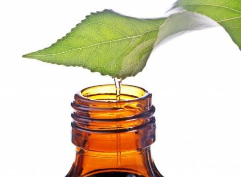 les bienfaits de l huile d arbre a the 2
