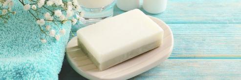 les bienfaits du lait d anesse 1