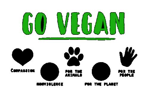 maquillage vegan 2